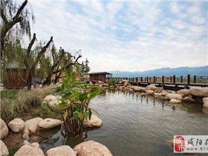 """5300亩水域总面积,还你一个梦里的""""关中水乡"""""""