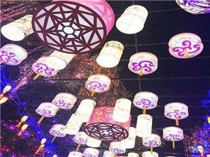 第3圈:自贡灯会/青峰油菜花基地/三块石葡萄园