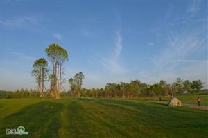 太和湿地公园