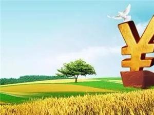 德令哈市尕海镇  惠农贷款助力春耕备播