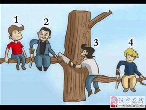 一张图,你认为哪个人最蠢? ?