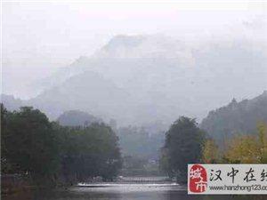 一款许多人都不知道的好茶:西乡炒青