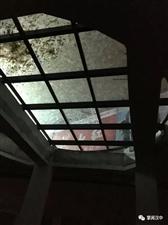 勉县最美油菜花海主会场玻璃碎了?官方回复