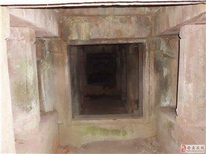 安岳发现最大的僧人古墓