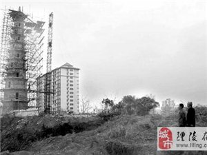 醴陵村民上交家中怪石助百年宝塔合体