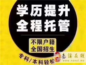 阳春三月,上班族唯升学历不可辜负!
