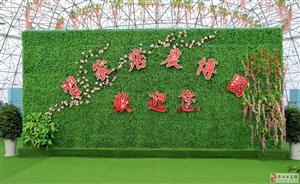 """骑行习家店农博园""""三花节""""――暨中国新歌声.习家店农博园赛区"""
