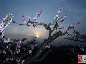 温馨提示:春暖花开时,文明出游从你我做起!