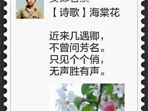 【诗歌】海棠花