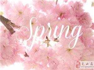 描��春天的句子有哪些 �我��在美句中感受春天