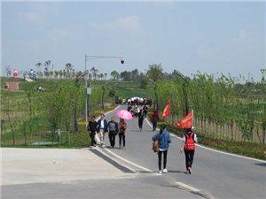昨天去内江,川南大草原风景区,旅游欢光见闻。