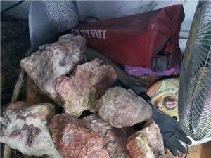 因需用钱 打包出手一批珊瑚玉原石观赏石有想法的老板可以联系我