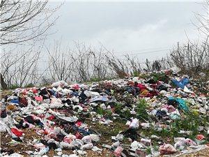 【网友爆料】桐城这里生活垃圾污染河水