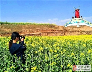 【武功头条】第三届中国武功古城油菜花节4月1日即将开幕(附线路图)