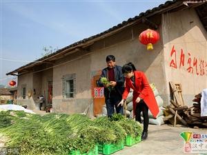 汉中女大学生辞年薪10万工作,返乡传承家乡味道