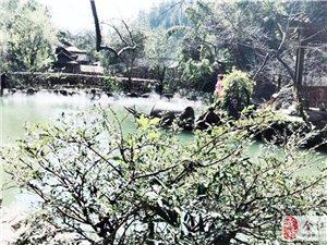 第6圈:酉阳/凤凰湖/康博大桥