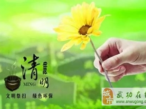 【绿野书院】清明节思亲(原创首发)――董岳峰