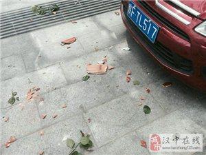 鹿麟路邮局门口红色雪铁龙被砸,跪求肇事者