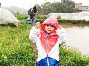 第7圈:香逸园草莓基地/连通农场/普音岩休闲农庄