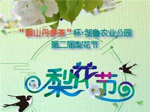 峄山邹鲁农业公园4月5日 第二届梨花节隆重开幕