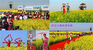 《金色花海醉美古城》第三届武功油菜花节――党小成