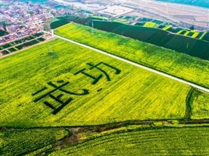 【精彩分享】第三届中国武功古城油菜花节精彩图集