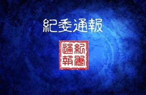 双辽市人大常委会副主任杨静接受监察调查