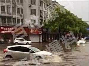 【百姓爆料】暴雨过后,江山的大街小巷变成这样!
