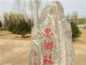 "潍坊""思乡林"""