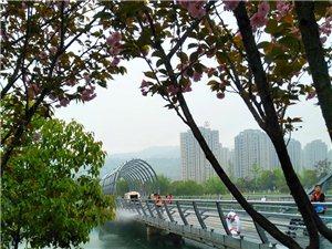 长沙梅溪湖