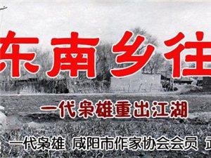 【绿野书院】文学奇葩色斑斓(为冯胜利《东南乡往事》而作)――雷奎
