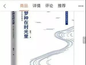 【绿野书院】人间冷暖清明节(散文)/林仑