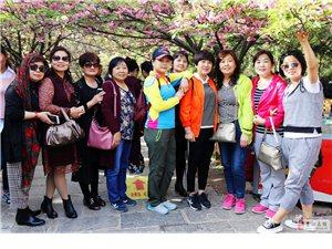 青龙寺兴庆宫里的49蓝天人