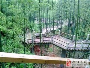 第10圈:赤水竹海/合江鹅公山/贯湾家滨生态园