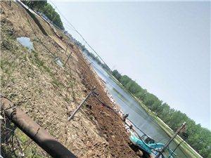 汉川泵站河改造工程这样可以吗?