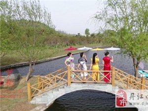 丹江口在线采风丁营――武当植物园 品均州八大碗传统美食活动