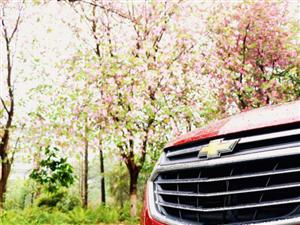 在最好的春日里,和探界者一起踏青