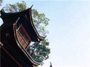 第11圈: 塘河古镇/董永坝/凤凰湿地公园