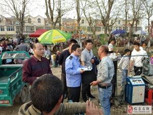 临泉县安委会办公室组织开展桃花艺术节安全督查