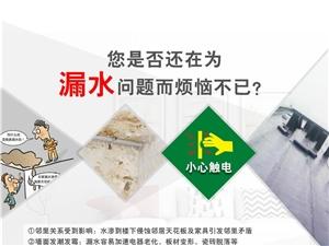 东鹏辅材(防水、瓷砖胶、健康涂料、真瓷胶)强势上市??!