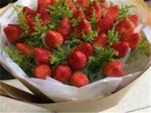 美高梅注册县头铺花园草莓园开园了