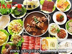 肉类火锅做主打九牧一歌系统化服务
