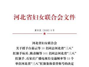 """澳门太阳城现金网国税局被评为河北省""""三八""""红旗集体"""