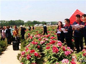 雷速户外4月22号周日万亩牡丹园+阿胶生产基地+江北水城+孔繁森纪念馆