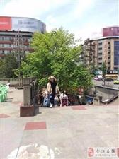 合江人走起,一起去少岷广场喝坝坝茶!