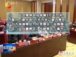 首届吕梁名特优功能食品展销会在汾阳举行