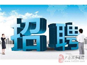 陕西省事业单位公开招聘8561名工作人员