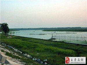 """驻马店这座人工湖被赞""""中原之肾""""!面积亚洲最大!景色优美不收费"""