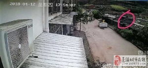 蓬溪八旬痴呆老人散步失踪次日找到