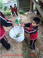 加鸠镇?#20248;?#23567;学小小志愿清洁员做好清洁风暴卫生,继续发扬,常抓不懈!